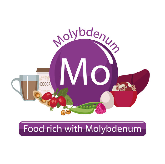 Molybdenum thyroid foods