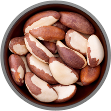 Brazil Nuts are rich in Selenium