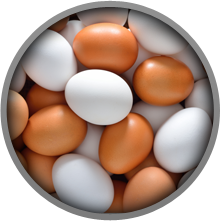 Eggs contain a lot of tyrosine