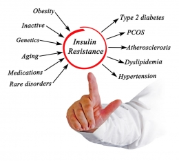 Insulin Resistance and Hypothyroidism Connection