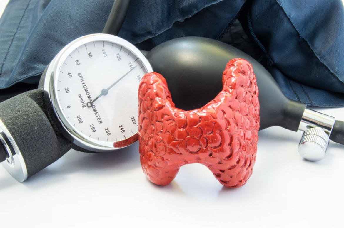 Hypothyroidism and Hyperthyroidism Relationship to Blood Pressure